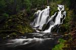 National Creek Falls, Study #1