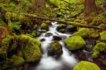Sorenson Creek