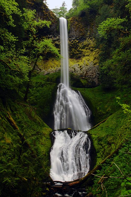 Pup Creek Falls by greglief