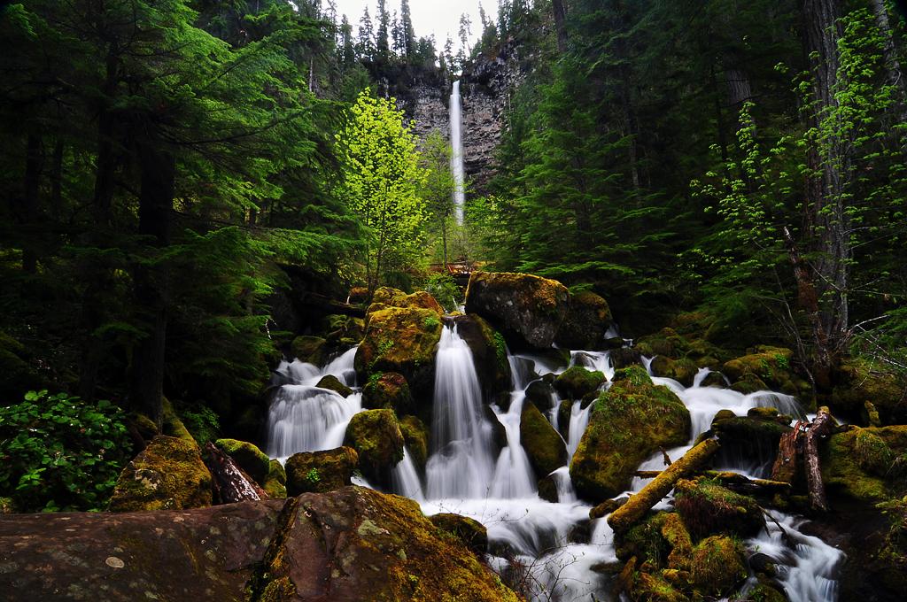 Watson Falls by greglief