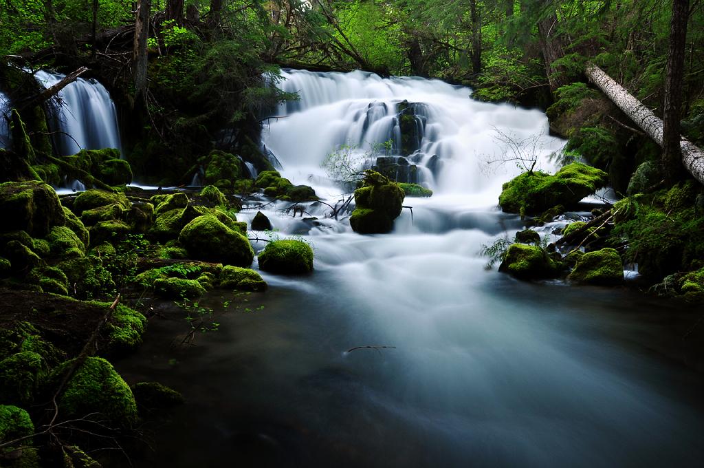 Pearsony Falls, Study #2 by greglief