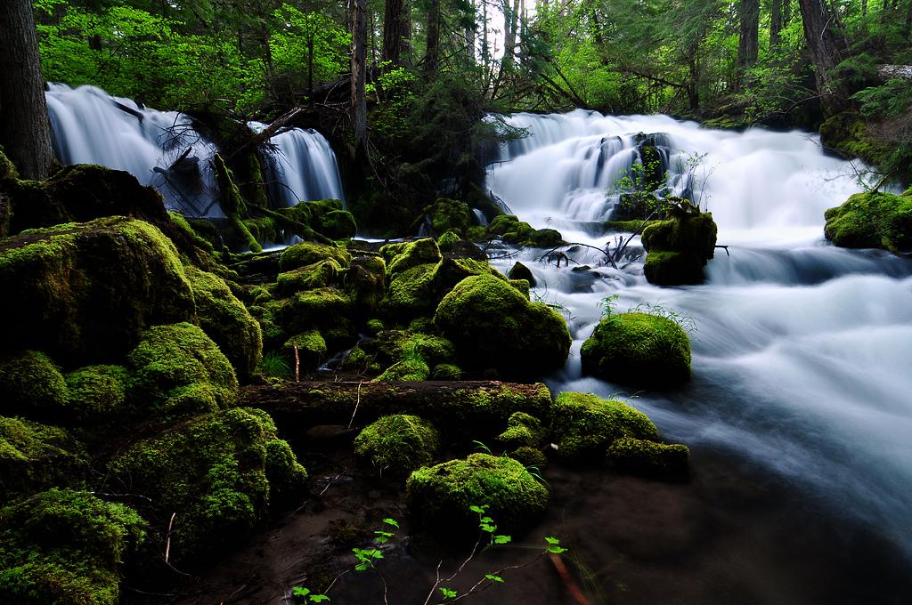Pearsony Falls, Study 1 by greglief