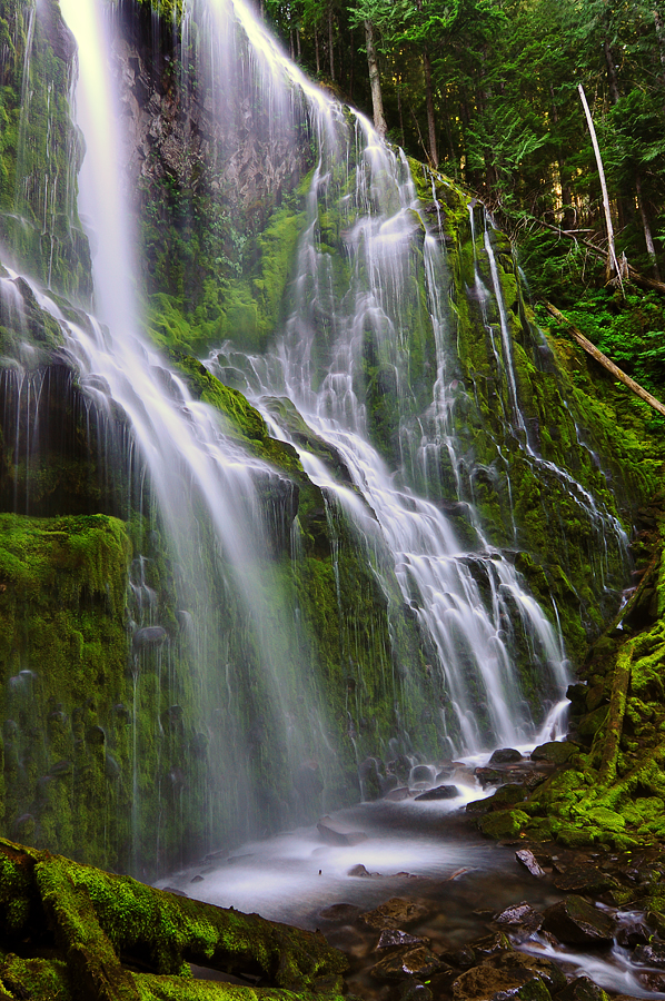 Proxy Falls, Study 2010-3L by greglief