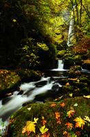 Elowah Falls, Autumn Study by greglief
