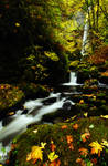 Elowah Falls, Autumn Study