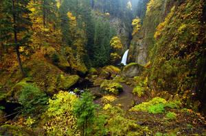 Wahclella Falls, Autumn Study by greglief