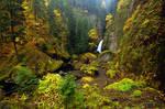 Wahclella Falls, Autumn Study