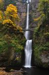 Multnomah Falls, Autumn Study