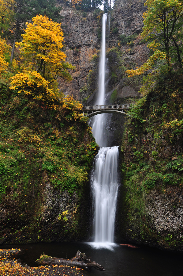 Multnomah Falls, Autumn Study by greglief
