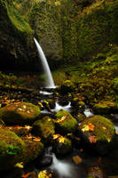 Ponytail Falls Autumn Study 1 by greglief