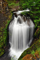 Upper Dog Creek Falls, Study 2 by greglief
