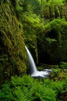 Lower Ruckel Creek Falls 11-1 by greglief