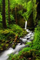 Lower Ruckel Creek Falls 08-2 by greglief