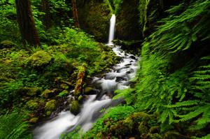 Lower Ruckel Creek Falls 08-3 by greglief