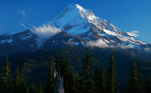 Mount Hood from near Red Hill by greglief