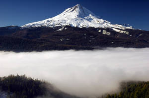 Mount Hood above Dufur Mill Rd by greglief