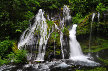 Panther Creek Falls from below by greglief