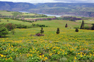 Looking down from McCall Point Trail