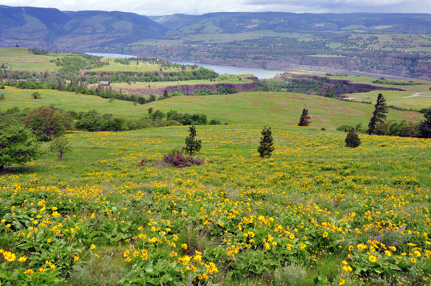 Looking down from McCall Point Trail by greglief