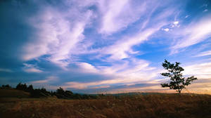 Baskett Slough Sunset by greglief