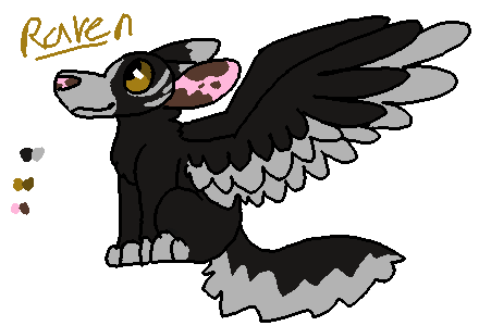 Raven ref by OtterstepOfMoonclan
