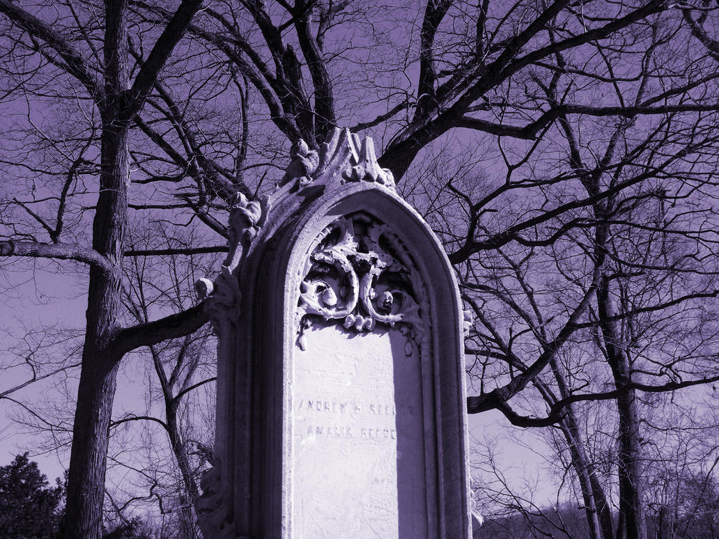 Purple Sheer by sgath92