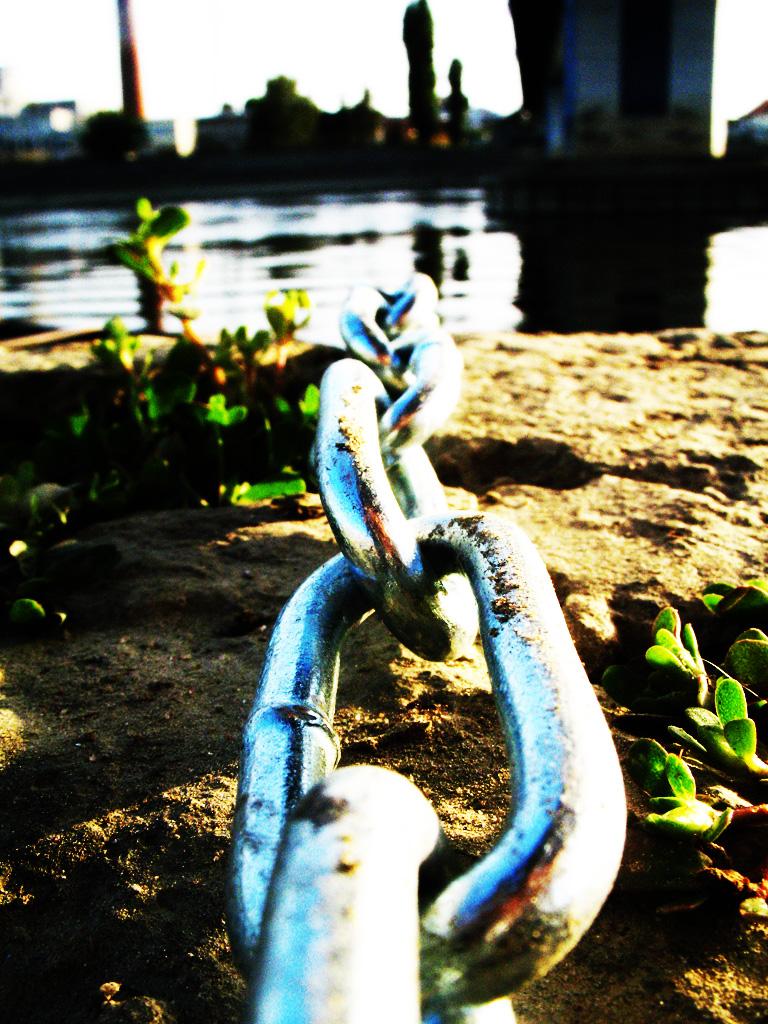 Bond Between Us by slipknot03