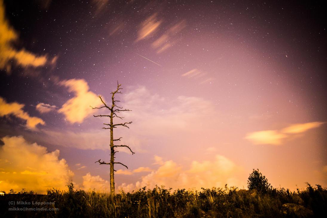 Perseid meteor shower 2 - 2013 12.08.2013 by hmcindie