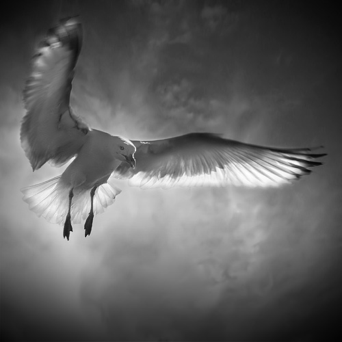 Send Me An Angel II by Pixydream