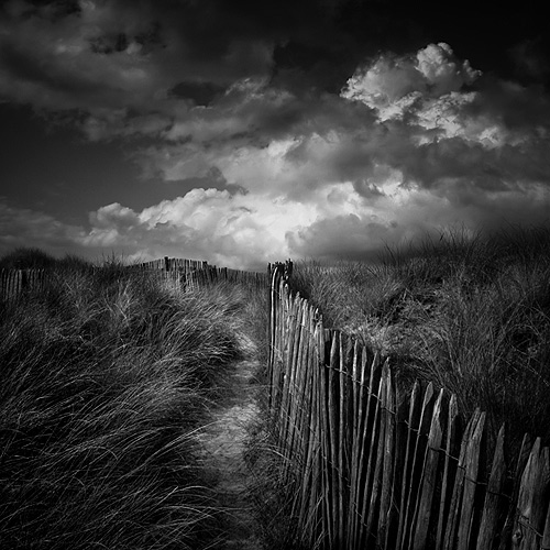 Across The Dunes by Pixydream