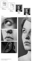 Portrait of Fanny: Details and Process