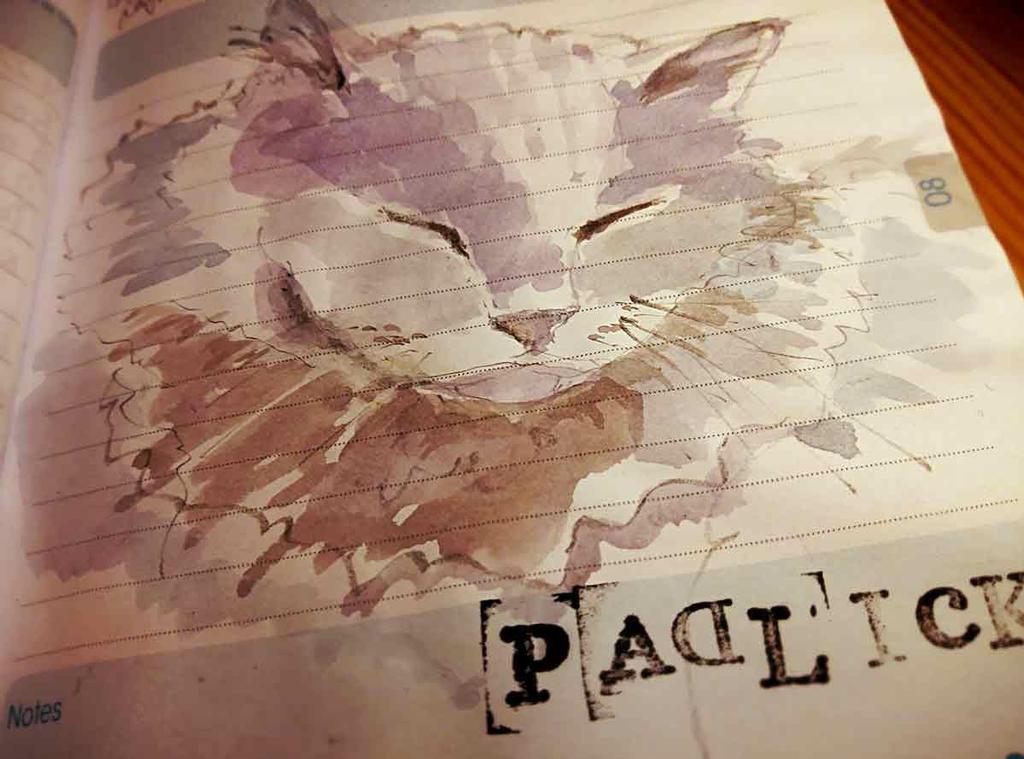 Padlick - Cat Sketch by Pamplemuss