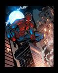 Spider-Man Night time