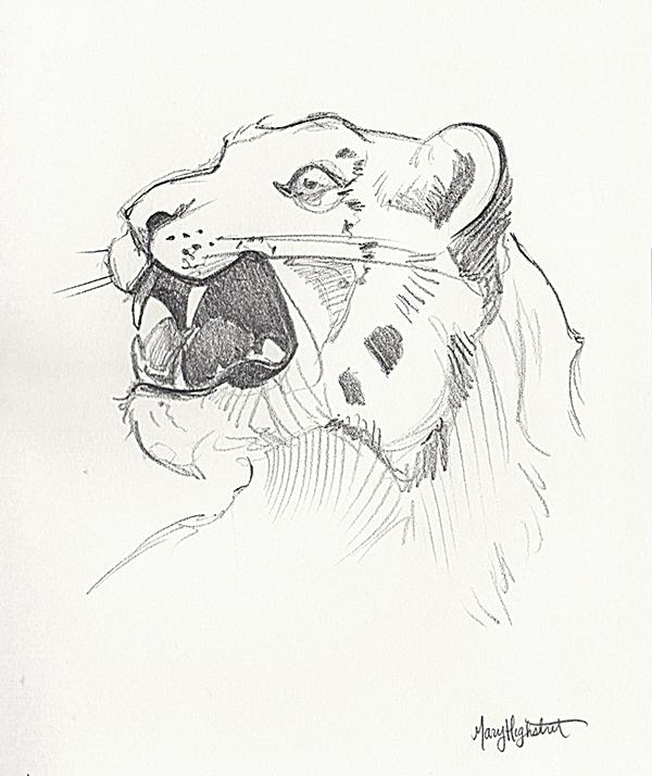 Snow Leopard by MaryHighstreet