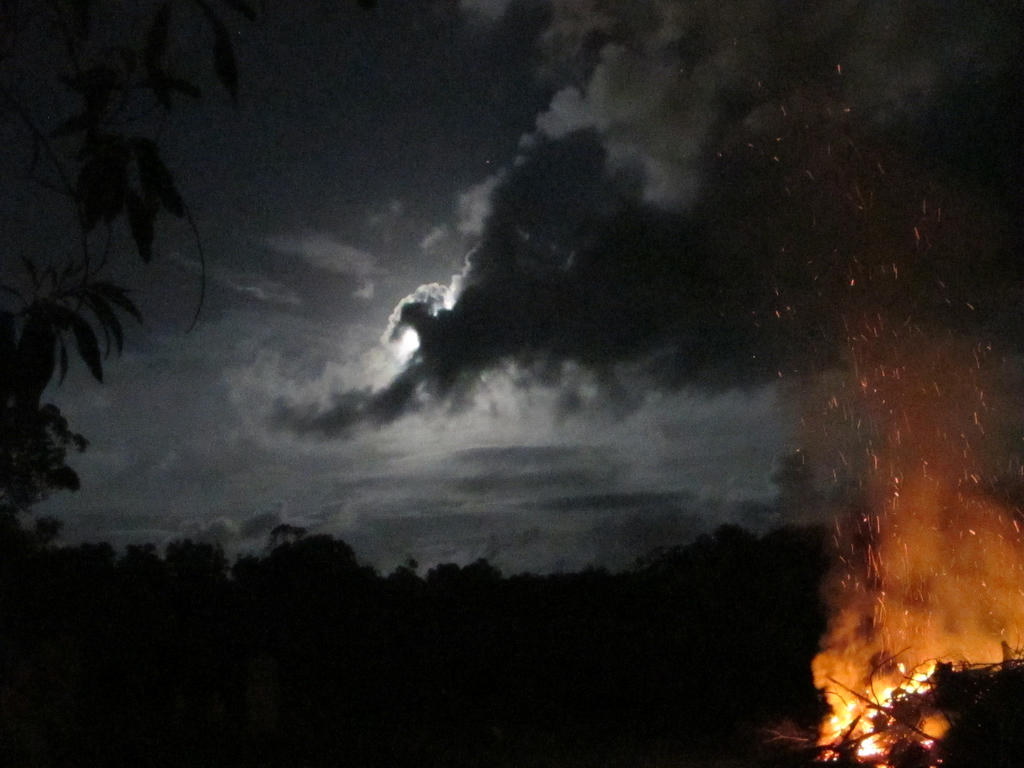 Midnight Looms