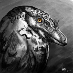 Velociraptor portrait by BrennanStokkermans