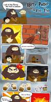 Harry Potter by Lupinpeace