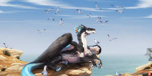 Annoying seagulls