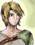-Twilight Princess- Link