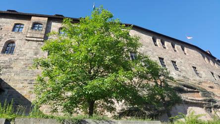 Nuremberg #5