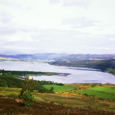 Oh Flower of Scotland by Flowerof-Scotland