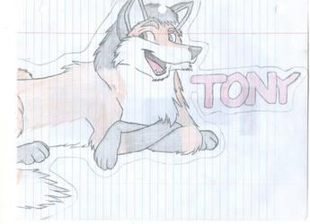 Tony Fox by 210teenlibrary