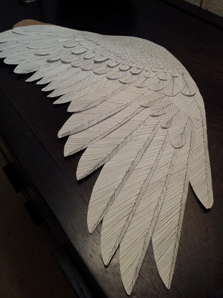 Paper Wing By Renoshaw On Deviantart