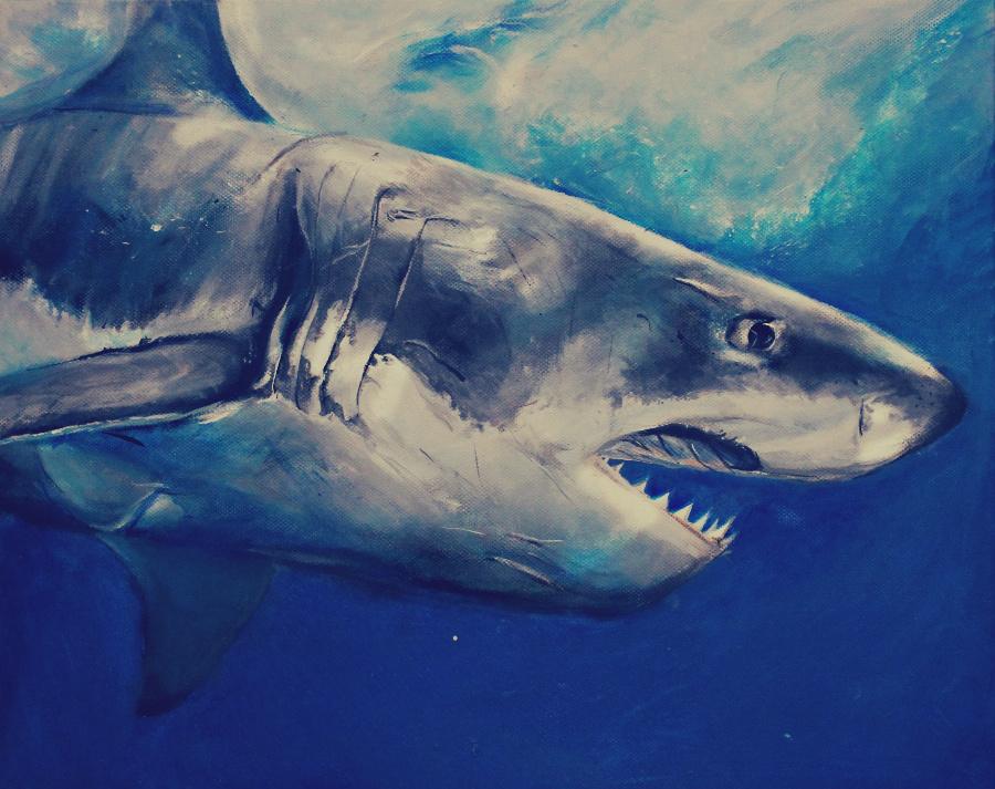 The great white shark by ahsr on DeviantArt  Great White Shark Painting