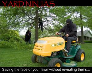 Yard Ninjas