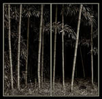 Big Bamboo in 2 panels