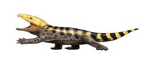 Gansurhinus qingtoushanensis