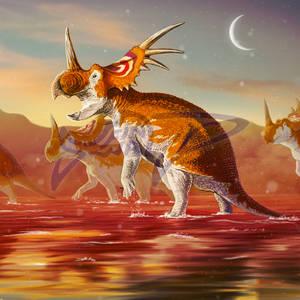 Commissoin: Styracosaurus