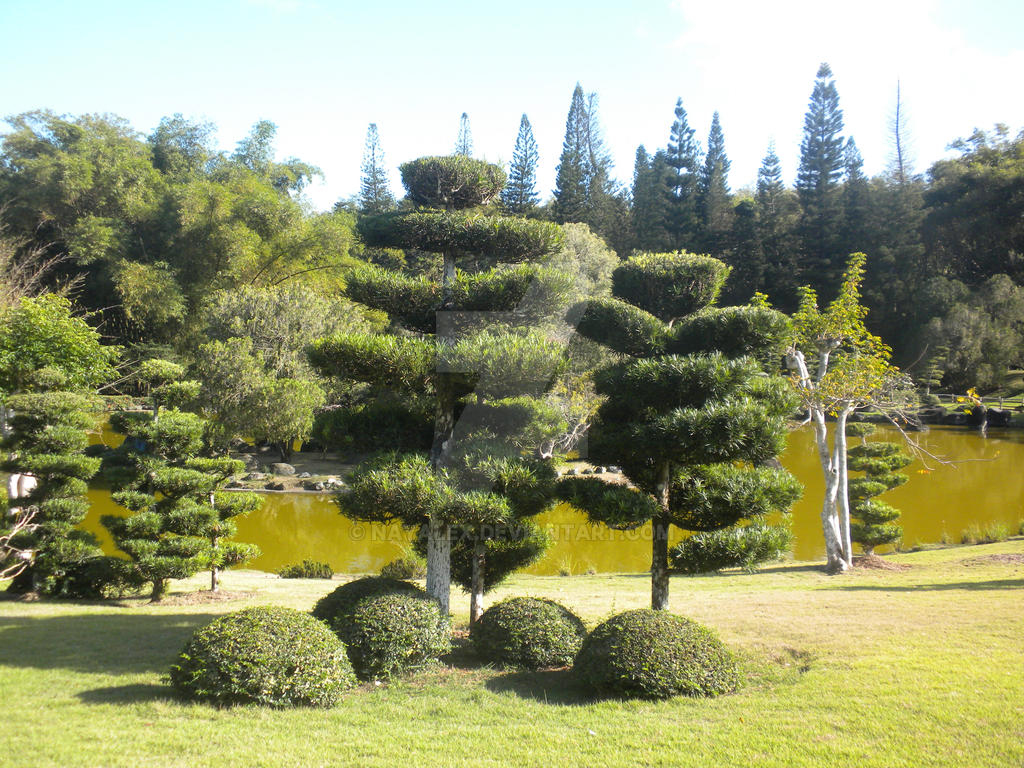 Estanque jardin japones by nayalex on deviantart for Estanque japones