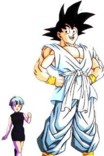 Wait--- Goku+Bulma by XTragicxBeautyX